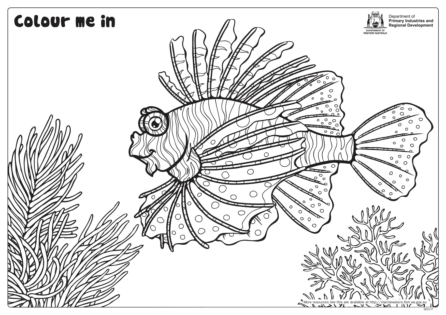 Fishy Fun Sheet Lionfish