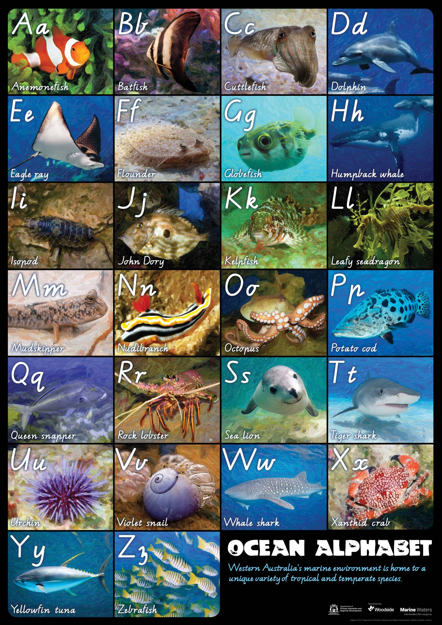 Poster Ocean Alphabet Department Of Primary Industries