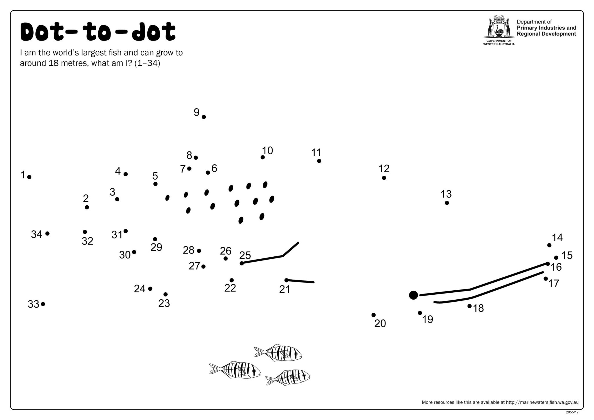 Fishy Fun Sheet Dot To Dot Whaleshark Department Of