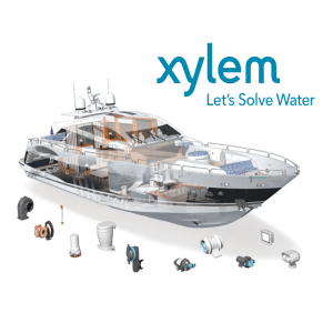 Display Xylem