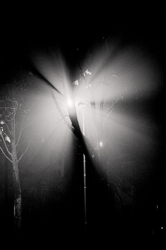 farfalle-di-nebbia-e-luce
