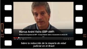 Marcus Andre Vieira se pronuncia sobre la reducción de la edad judicial en el Brasil