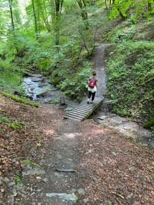 Bewusste Wanderung: Traumschleife Baybachklamm @ Treffpunkt: Monzinger Straße 44, 55566 Bad Sobernheim