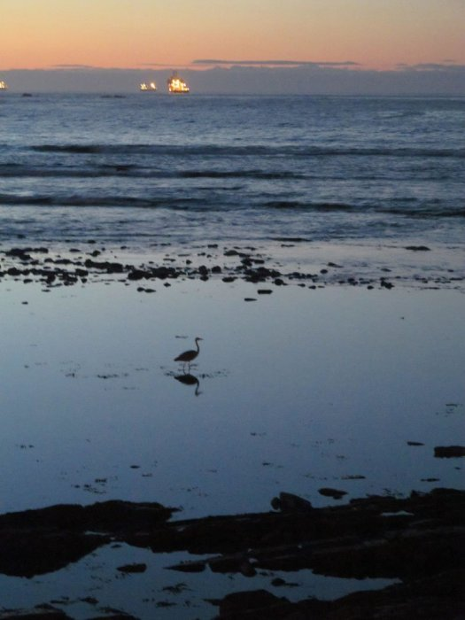 Now if only I'd had my tripod. (Lights on horizon are big ships.)