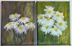 Daisy studies by by Marion Boddy-Evans Isle of Skye Scotland Artist