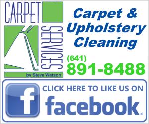 Carpet Services by Steve Watson