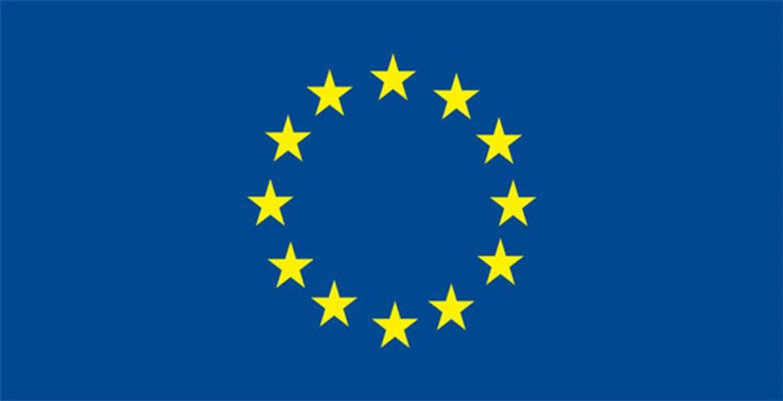 European Union Internship Program 2021