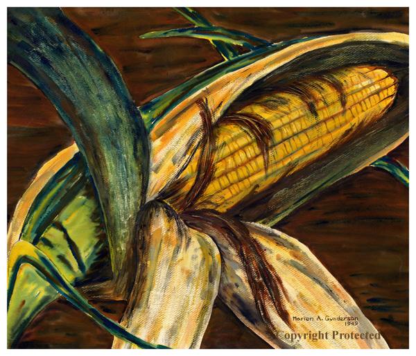 Ear of Iowa Corn, watercolor by Marion Gunderson, 1949