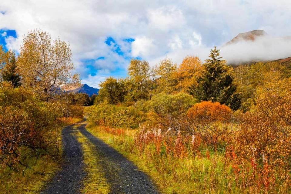 alaska nature photography