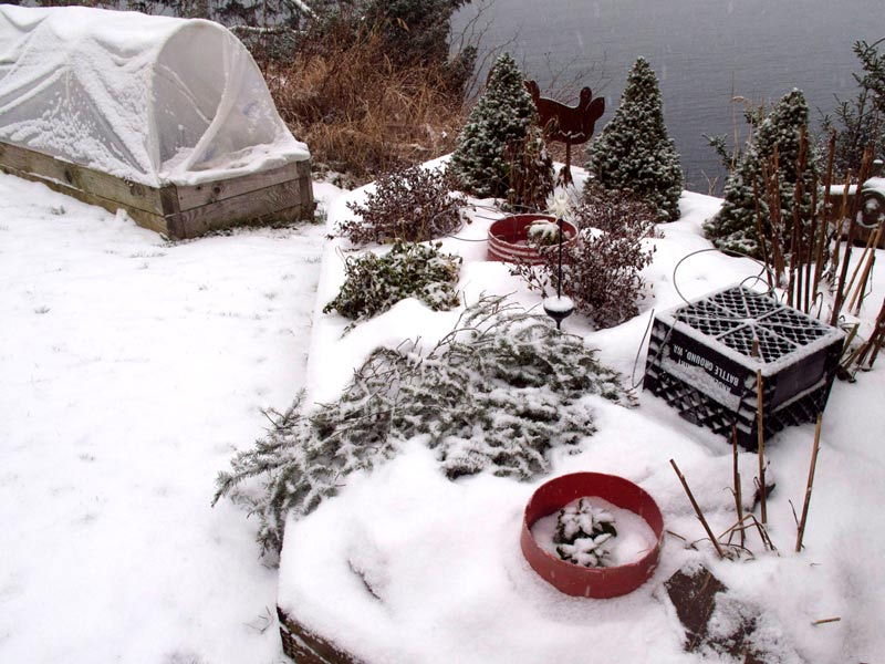 plant covers for winter, cool climate gardening, organic gardening tips