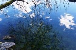 spiegelung-im-wasser