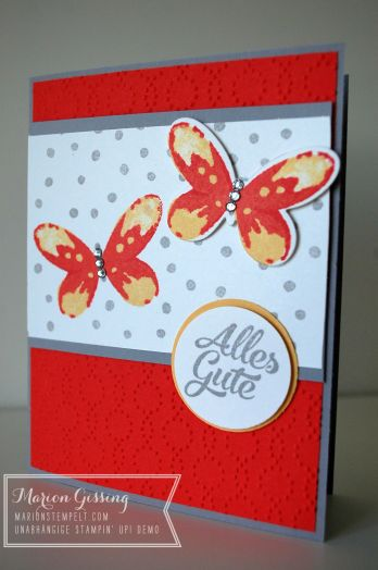 stampinup_watercolor wings_geburtstagskarte