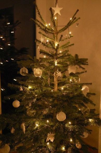 weihnachtsbaum_muenchen_2015