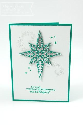 stampinup_weihnachtstern_workshoprojekt