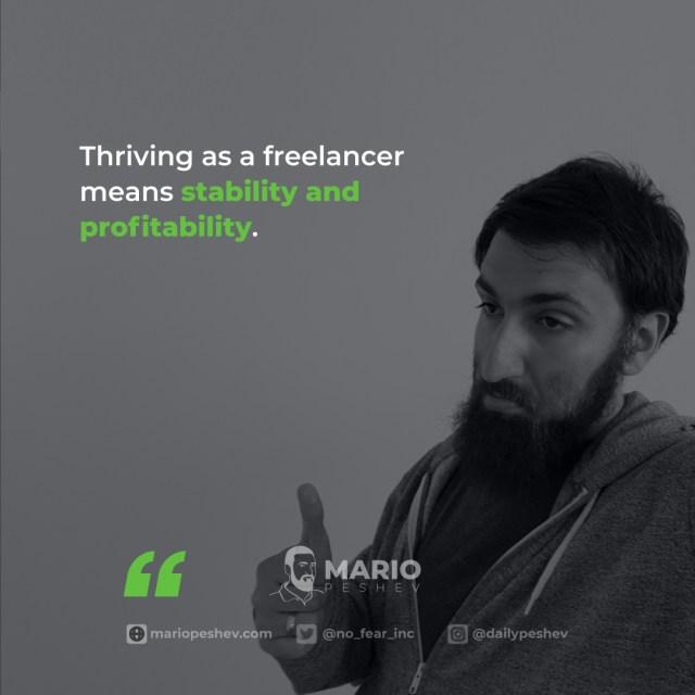 freelancer software engineer