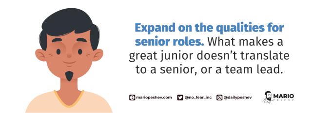 qualities for senior roles