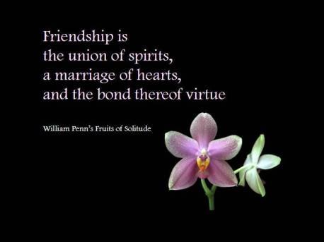 friendship-is-te-union-of-spirits