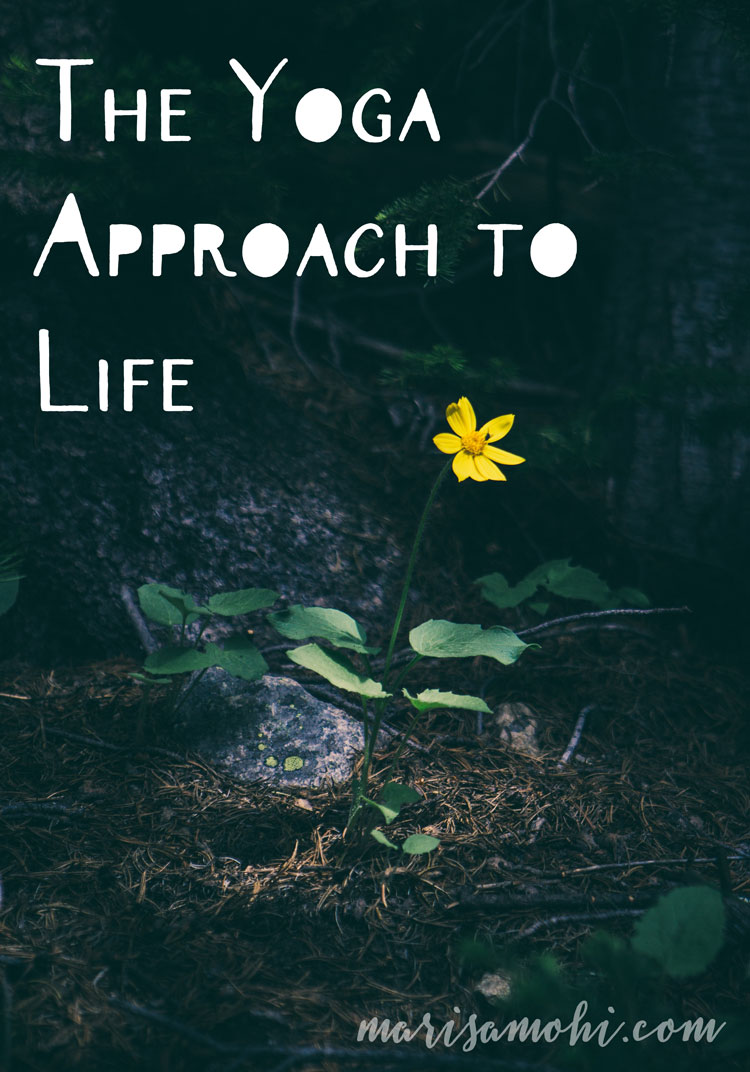 The Yoga Approach to Life