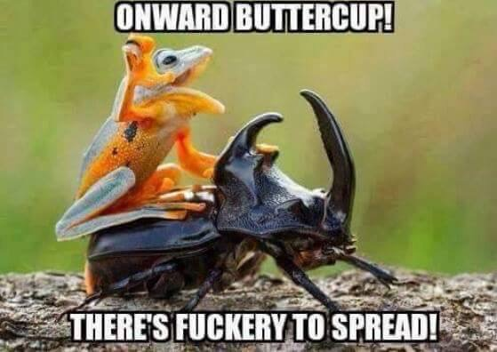 Onward Buttercup! There's fuckery to spread!