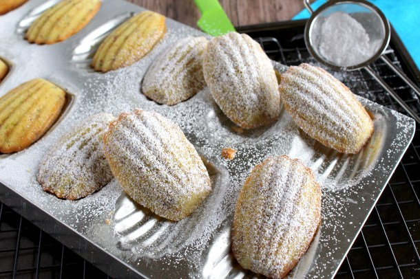 Madeleines with powdered sugar