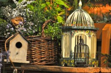 Birdhouse from garden display