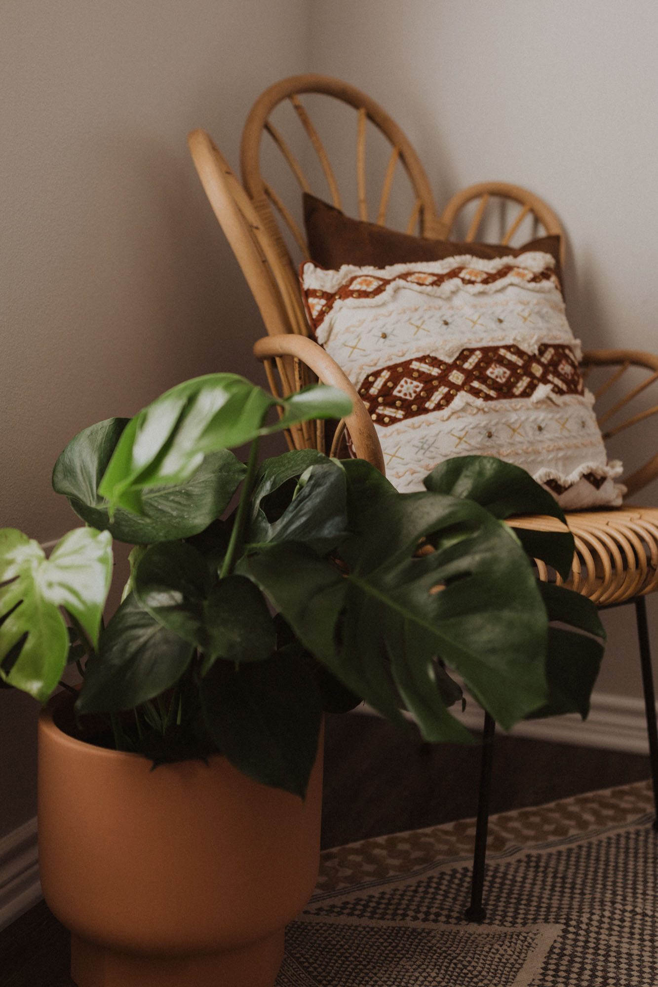 Monstera plant home office decor