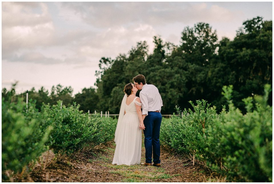 Bride and Groom in blueberry field