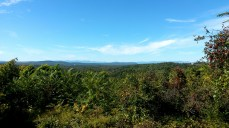 The view along the hike