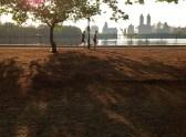 Upper East Side - Central Park