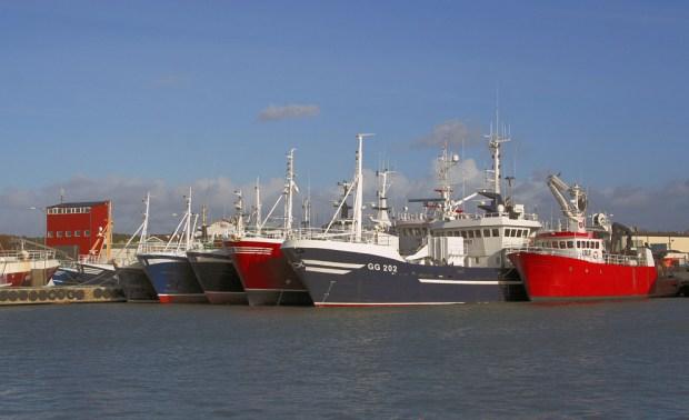 Fiskebäcks hamn 2008