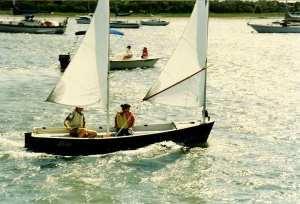 Taylors Creek Sailing