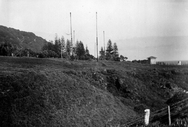 Raoul Island Radio, April 1950: 'Looking west along line of aerial systems showing gully over which new aerial would run.'