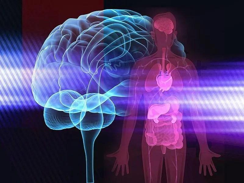 terapie-corpo-mente