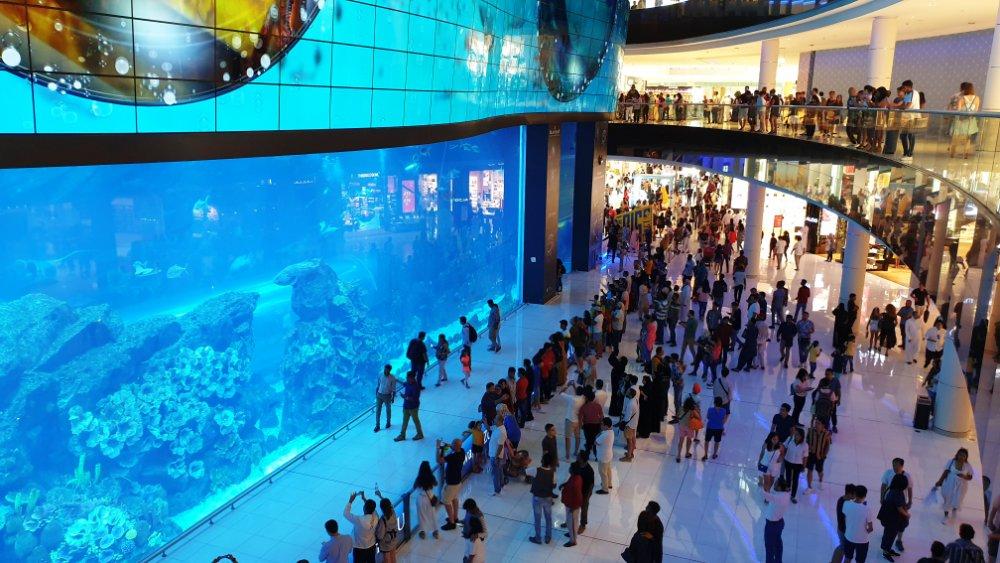 Acvariul din Dubai Mall