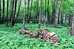 An altar for ritual sacrifices at another sacred grove near Marisola village.