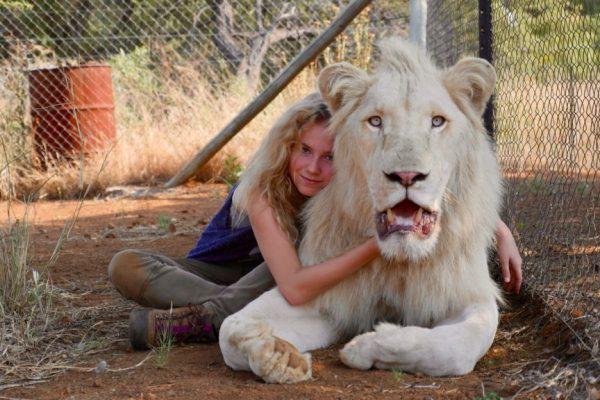 ulasan film mia and the white lion