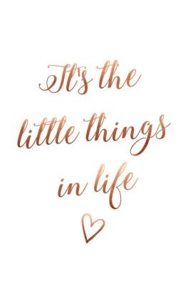 Kleine dingen zijn Groots