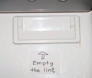 Empty Dryer Lint Blog Post