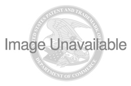 the yale law journal forum the punishment bureaucracy - 457×190