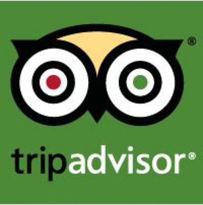 TripAdvisor-Icon