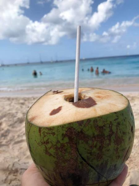 Barbados - Barbados beach break on our Southern Caribbean cruise - fresh coconut with local rum