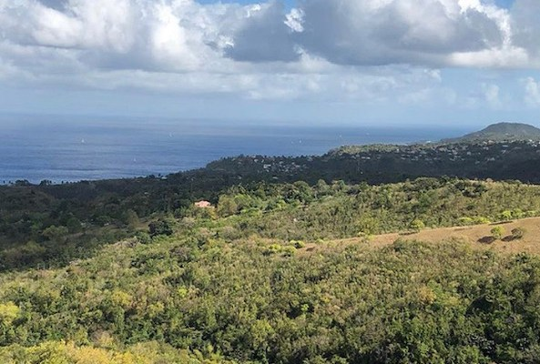 St Lucia - Cosol Tour - travel blogger -southern caribbean cruise