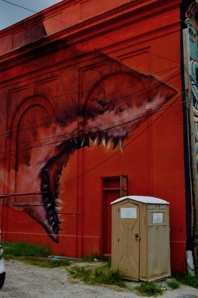 St Pete Murals - Shark Toof - St petersburg Florida