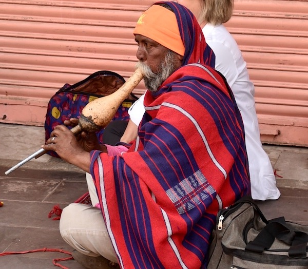 Snake - Snake Charmers - Jaipur - India - India vacation - traveling India