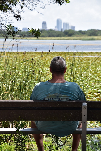 man sitting on a bench overlooking a lake and downtown St Petersburg