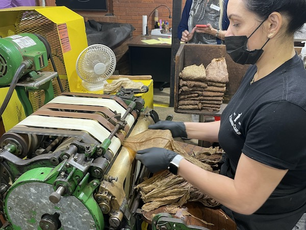 woman using a machine to remove the stem from tobacco leave
