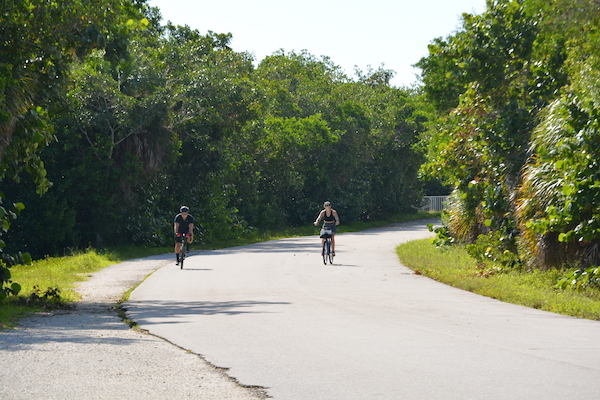 Couple riding bicycles on the Wildlife Drive at the Ding Darling wildlife refuge