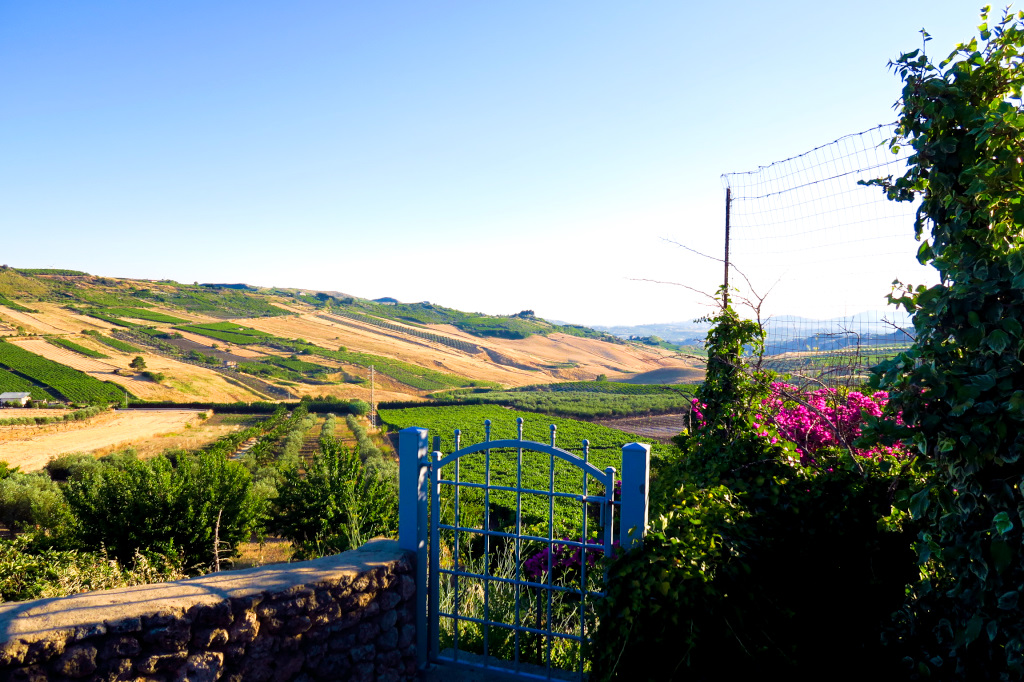 Looking out from our Villa in Castrofillippo