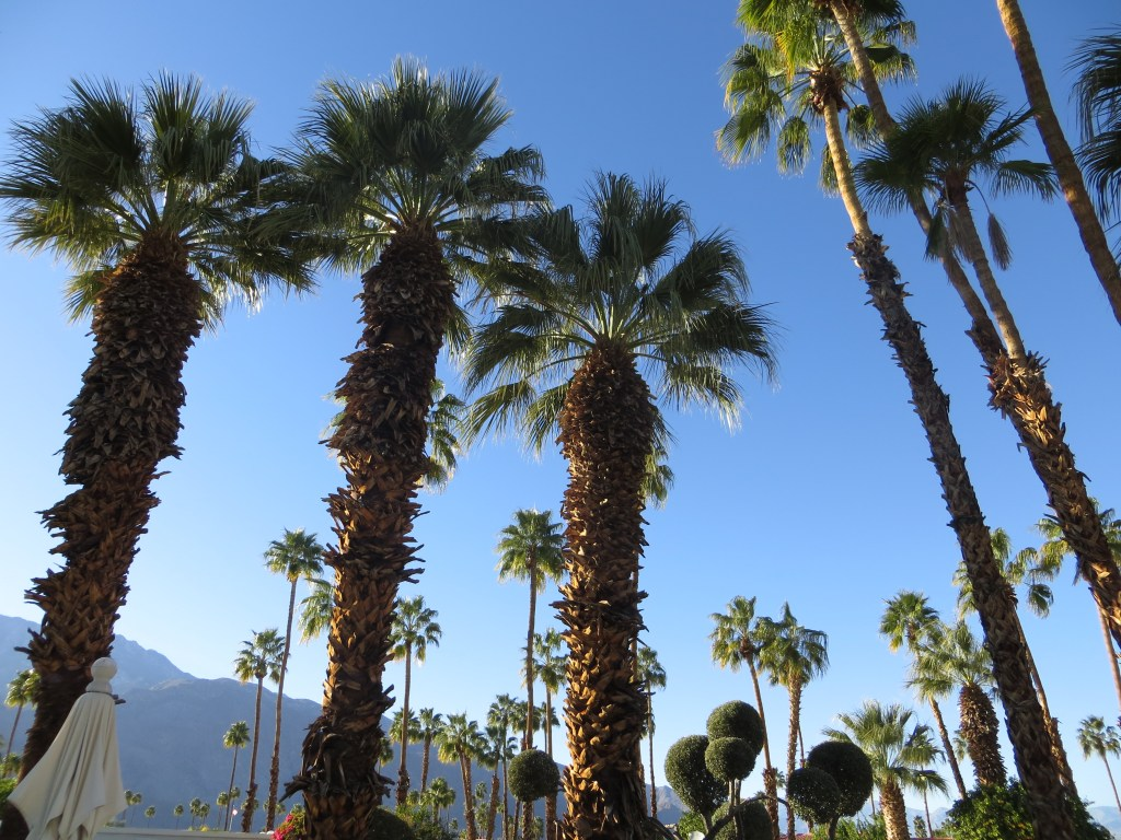 The Palms of Palm Springs