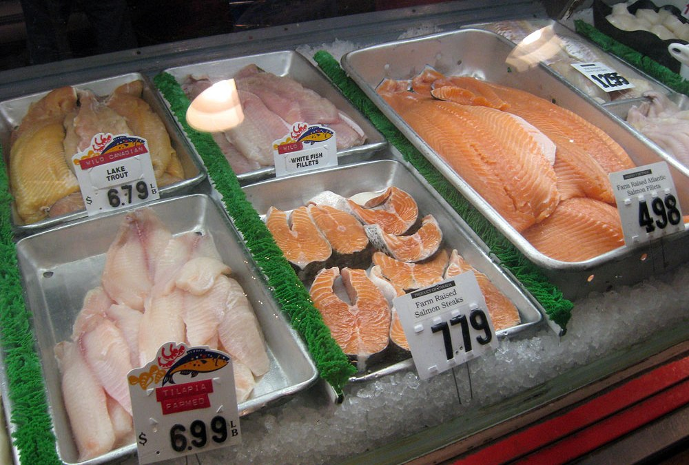 Empire Fish Company: Milwaukee fish and seafood market